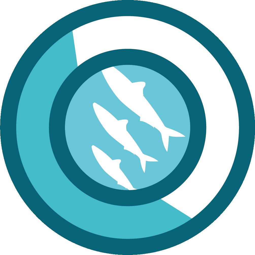 Logiciel de gestion produits de la mer